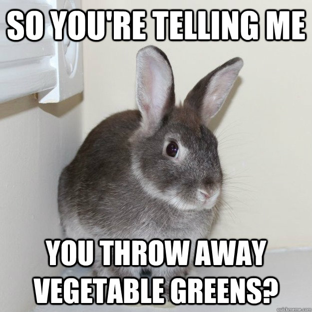 So You're telling me You throw away vegetable greens? - So You're telling me You throw away vegetable greens?  Skeptical Bunny