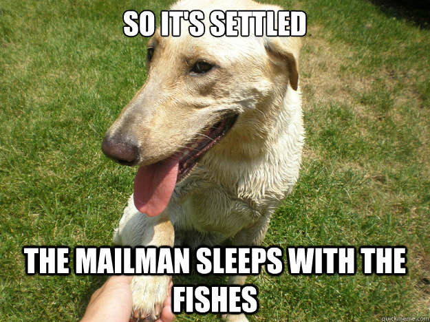 So it's settled The mailman sleeps with the fishes - So it's settled The mailman sleeps with the fishes  Evil Business Deal Dog
