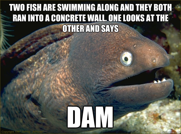 Two fish are swimming along and they both ran into a concrete wall. One looks at the other and says Dam - Two fish are swimming along and they both ran into a concrete wall. One looks at the other and says Dam  Bad Joke Eel