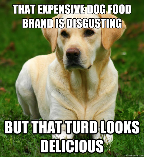 that expensive dog food brand is disgusting but that turd looks delicious  Dog Logic