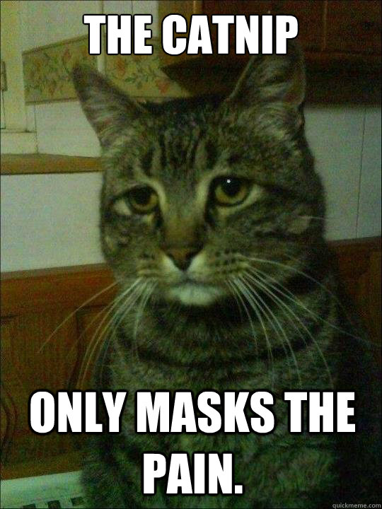 the catnip   only masks the pain.