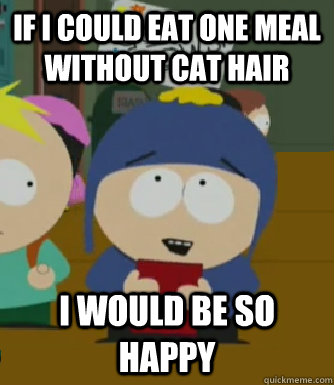 If I could eat one meal without cat hair I would be so happy - If I could eat one meal without cat hair I would be so happy  Craig - I would be so happy