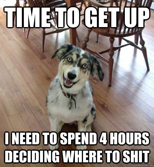 time to get up i need to spend 4 hours deciding where to shit - time to get up i need to spend 4 hours deciding where to shit  Overly Attached Dog