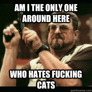 Am i the only one around here WHO HATES FUCKING CATS - Am i the only one around here WHO HATES FUCKING CATS  Am I The Only One Round Here