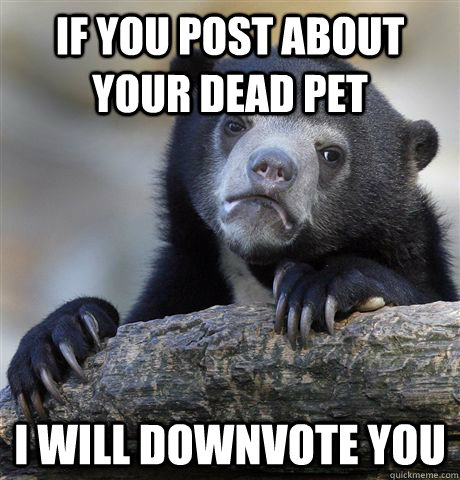 If you post about your dead pet I will downvote you - If you post about your dead pet I will downvote you  Confession Bear