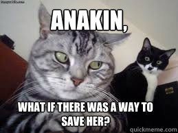 Anakin, what if there was a way to save her?