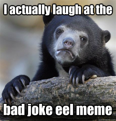 I actually laugh at the bad joke eel meme - I actually laugh at the bad joke eel meme  Confession Bear