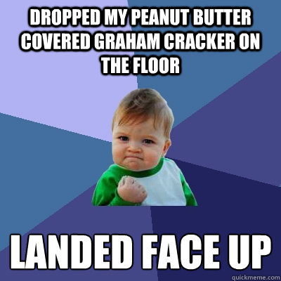 Dropped my Peanut Butter covered Graham Cracker on the Floor Landed Face Up - Dropped my Peanut Butter covered Graham Cracker on the Floor Landed Face Up  Success Kid