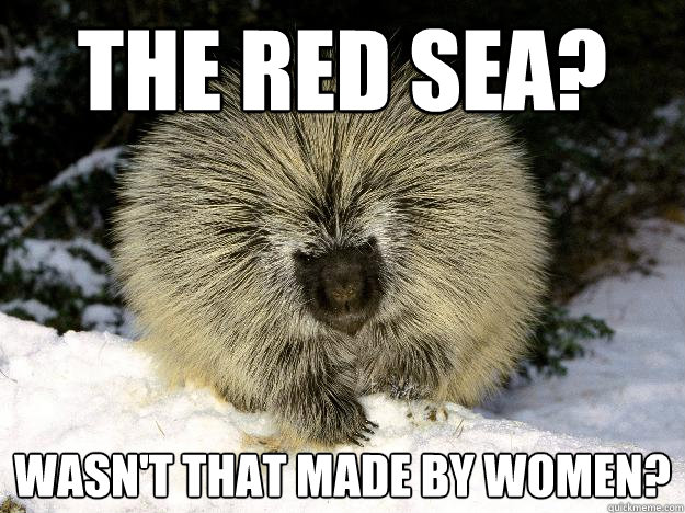 The red sea? Wasn't that made by women? - The red sea? Wasn't that made by women?  Overly Racist Porcupine