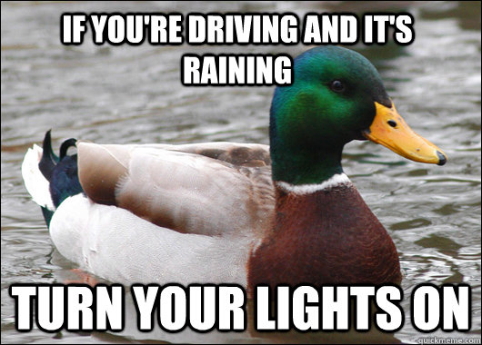 If you're driving and it's raining turn your lights on - If you're driving and it's raining turn your lights on  Actual Advice Mallard