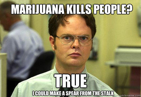 marijuana kills people? True I could make a spear from the stalk - marijuana kills people? True I could make a spear from the stalk  Schrute