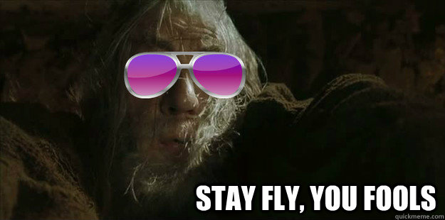 Stay fly, you fools -                                     Stay fly, you fools  Cool Gandalf