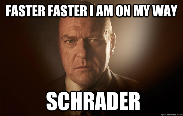 FASTER FASTER I AM ON MY WAY  schrader - FASTER FASTER I AM ON MY WAY  schrader  Misc