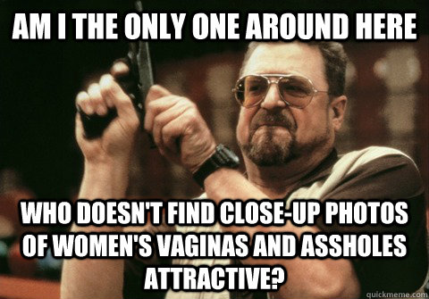 Am I the only one around here who doesn't find close-up photos of women's vaginas and assholes attractive? - Am I the only one around here who doesn't find close-up photos of women's vaginas and assholes attractive?  Am I the only one
