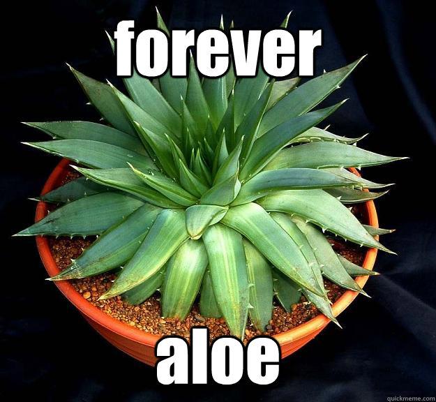 forever aloe  Forever aloe