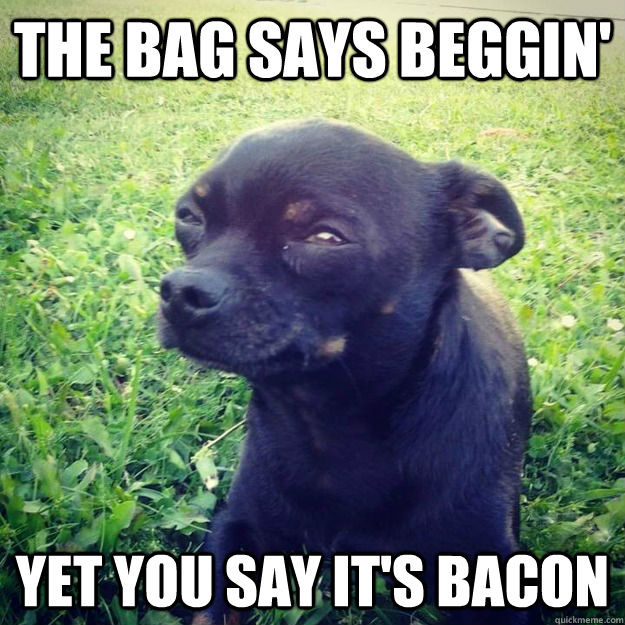 The bag says beggin' yet you say it's bacon - The bag says beggin' yet you say it's bacon  Skeptical Dog