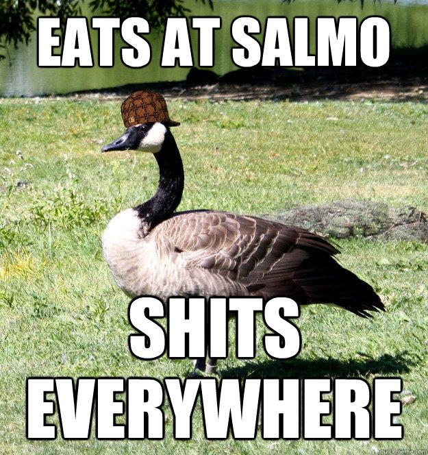 eats at salmo shits everywhere