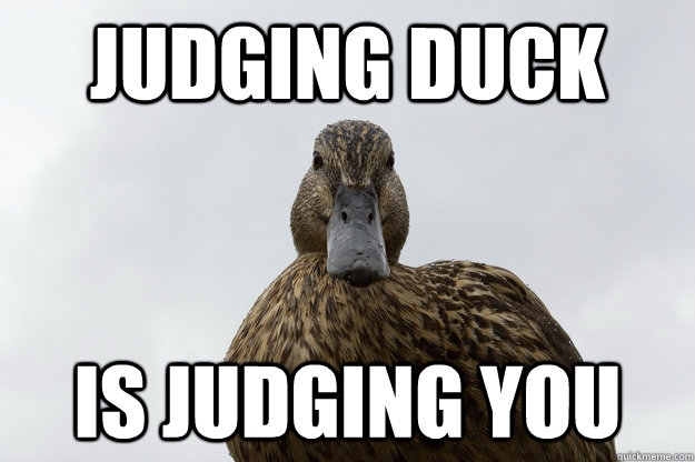 Judging duck Is judging you