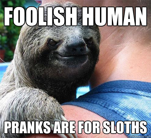 Foolish human pranks are for sloths - Foolish human pranks are for sloths  Suspiciously Evil Sloth