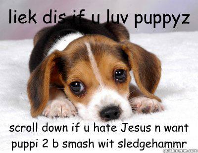 liek dis if u luv puppyz scroll down if u hate Jesus n want puppi 2 b smash wit sledgehammr - liek dis if u luv puppyz scroll down if u hate Jesus n want puppi 2 b smash wit sledgehammr  the Facebook