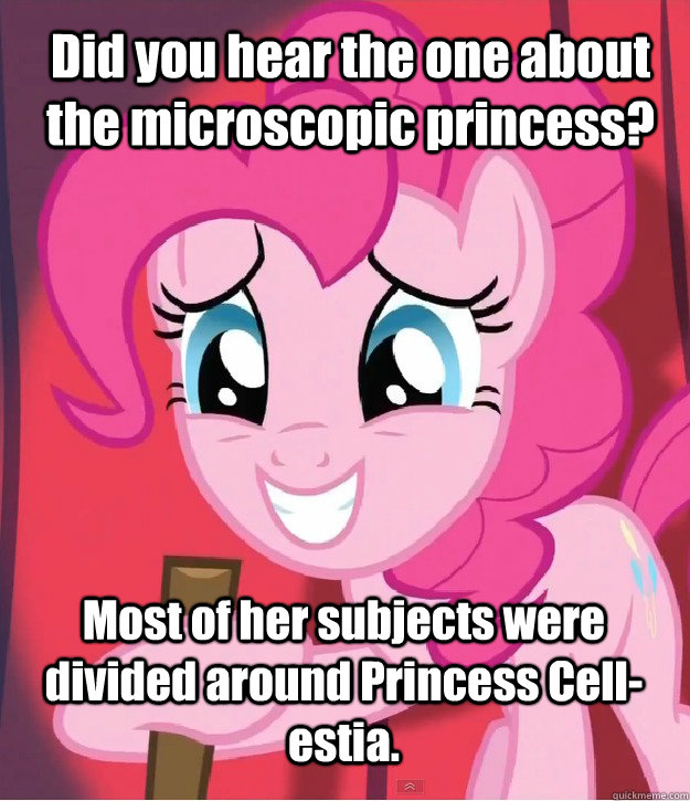 Did you hear the one about the microscopic princess? Most of her subjects were divided around Princess Cell-estia.  Bad Joke Pinkie Pie