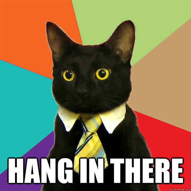 Hang In There -  Hang In There  Business Cat