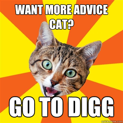 Want more advice cat? go to digg - Want more advice cat? go to digg  Bad Advice Cat