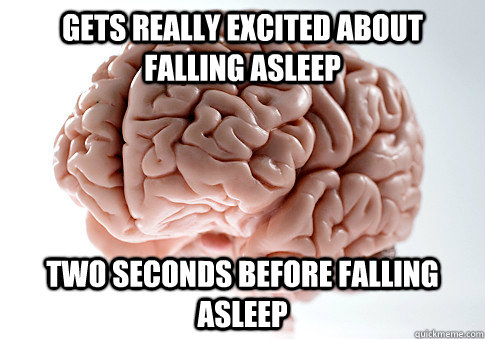 Gets really excited about falling asleep two seconds before falling asleep  Scumbag Brain