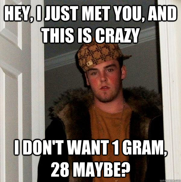 Hey, I just met you, and this is crazy I don't want 1 gram, 28 maybe? - Hey, I just met you, and this is crazy I don't want 1 gram, 28 maybe?  Scumbag Steve