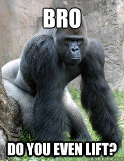 BRO do you even lift?  Gorilla