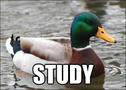 Study -  Study  Actual Advice Mallard