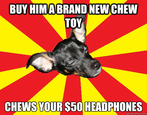 buy him a brand new chew toy chews your $50 headphones