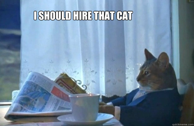 I should hire that cat -       I should hire that cat  Sophisticated Cat