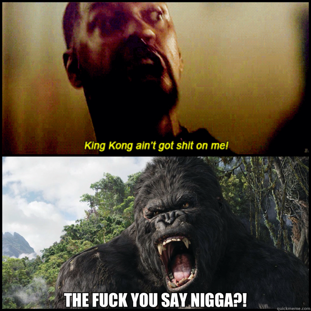 THE FUCK YOU SAY NIGGA?!