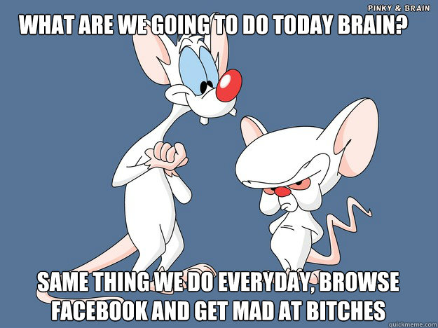 What are we going to do today brain? same thing we do everyday, browse facebook and get mad at bitches - What are we going to do today brain? same thing we do everyday, browse facebook and get mad at bitches  Pinky and the Brain