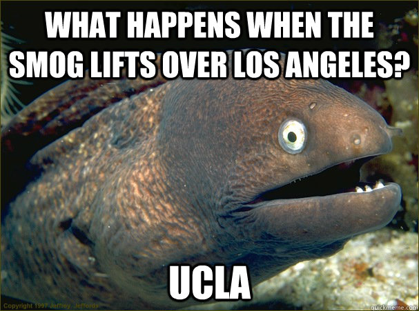 what happens when the smog lifts over Los Angeles? UCLA - what happens when the smog lifts over Los Angeles? UCLA  Bad Joke Eel