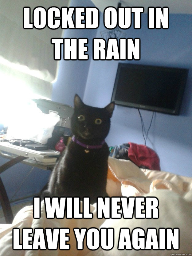 Funny Meme Rain : Locked out in the rain i will never leave you again