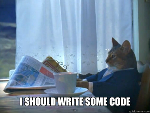 I should write some code -  I should write some code  The One Percent Cat