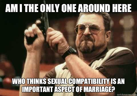 Am I the only one around here Who thinks sexual compatibility is an important aspect of marriage? - Am I the only one around here Who thinks sexual compatibility is an important aspect of marriage?  Am I the only one