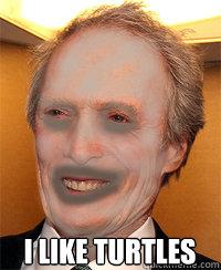 i like turtles  clint eastwood i like turtles