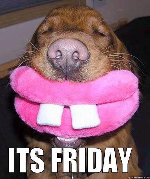 Dog Friday Feeling - quickmeme
