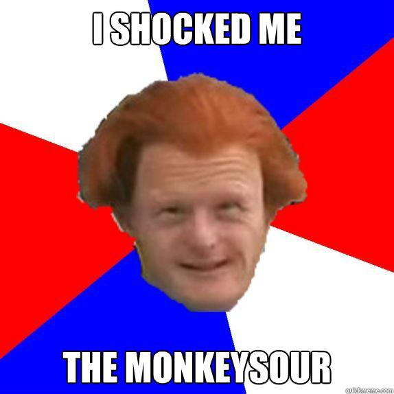 i shocked me the monkeysour