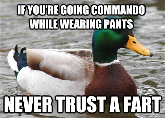 if you're going commando while wearing pants never trust a fart - if you're going commando while wearing pants never trust a fart  Actual Advice Mallard