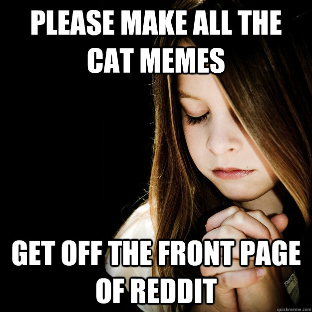 Please make all the cat memes get off the front page of reddit