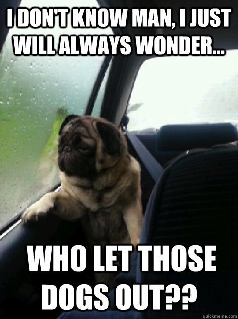 I don't know man, I just will always wonder...  Who let those dogs out?? - I don't know man, I just will always wonder...  Who let those dogs out??  Introspective Pug