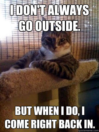 I don't always go outside. But when I do, I come right back in.   The Most Interesting Cat in the World
