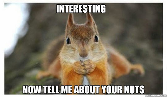 078cdb54a55f26c7ffe45dbb21e11303dfa5fb3685507fb6c8f2aa325611e0a0 interesting now tell me about your nuts psychiatrist squirrel,Squirrel Meme Nuts