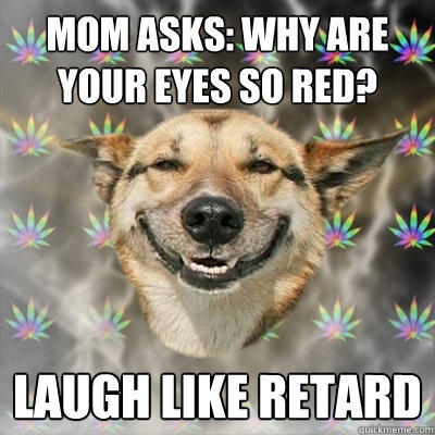 Mom asks: Why are your eyes so red? laugh like retard  Stoner Dog