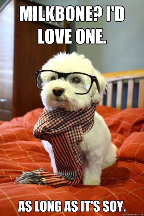 Milkbone? I'd love one. As long as it's soy. - Milkbone? I'd love one. As long as it's soy.  Hipster Dog
