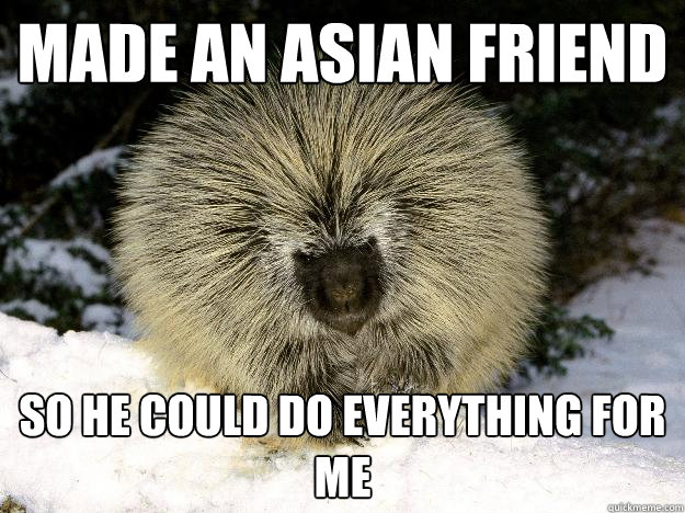 Made an asian friend so he could do everything for me